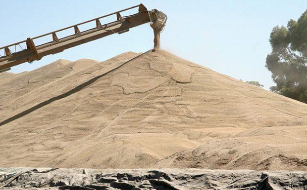 grain trading NSW